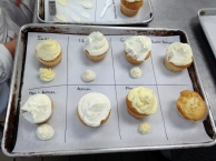A buttercream tasting -- seven different recipes side by side to compare taste, texture, color, and pipe-ability.