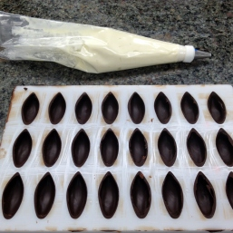 Chocolate Shells